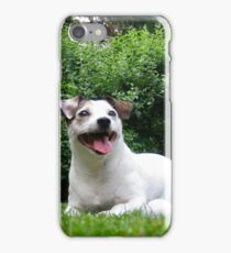 jack russel 4 iPhone Case/Skin
