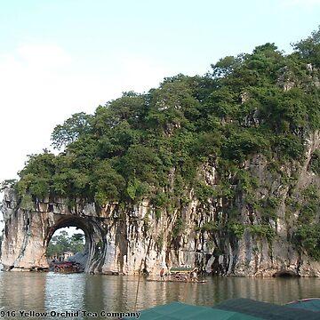 Elephant Trunk Hill by teaguy