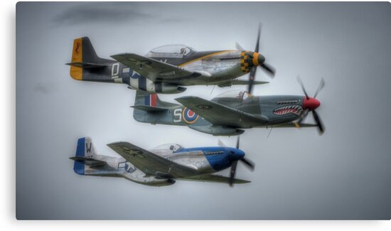Mustang Trio by Nigel Bangert