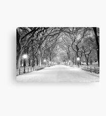 Cental Park New York, NY  winter scene Canvas Print