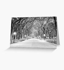 Cental Park New York, NY  winter scene Greeting Card