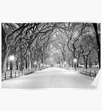 Cental Park New York, NY  winter scene Poster