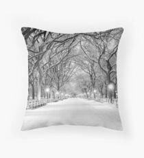 Cental Park New York, NY  winter scene Throw Pillow