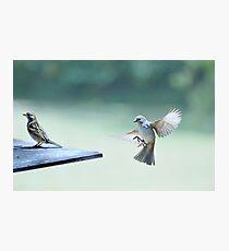 landing... Photographic Print
