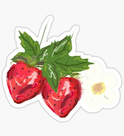 Strawberry Botanical Sticker