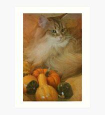 Harvest kitty 1 of 2 Art Print