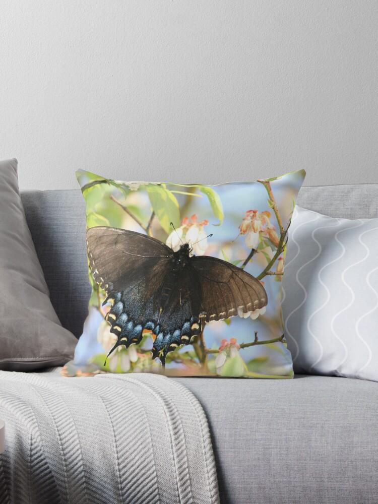 Black Butterfly on a Blueberry Bush by DebbieCHayes