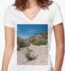 Wildflowers Along Sky Island Scenic Byway to Mt. Lemmon Women's Fitted V-Neck T-Shirt