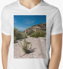 Wildflowers Along Sky Island Scenic Byway to Mt. Lemmon Men's V-Neck T-Shirt