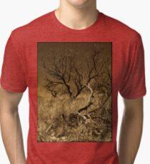 Mesquite Tri-blend T-Shirt