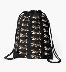 Cardigan Brindle Drawstring Bag