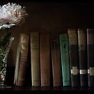 The Book Shelf by John Rivera