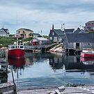 Pegggies Cove Nova Scotia  by browncardinal8