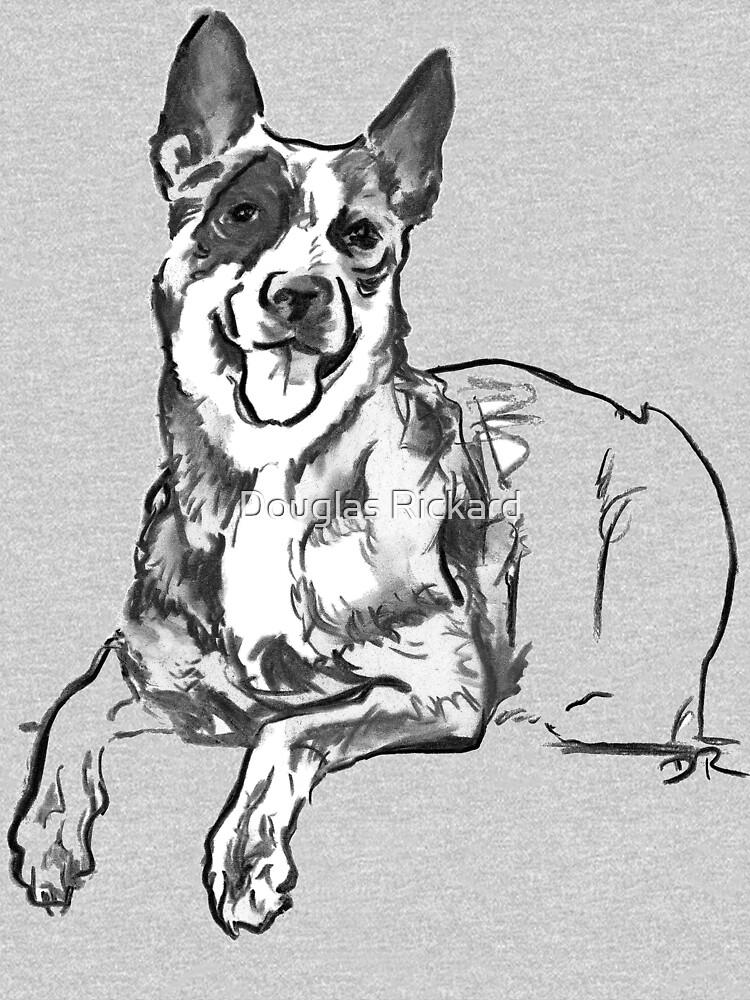 Blue Heeler Drawing by douglasrickard