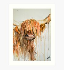 Highland Cow One Art Print