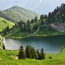 Arvouin lake by Patrick Morand