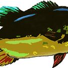 Peacock Bass by Statepallets