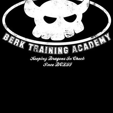 Berk Training Academy by stuffofkings