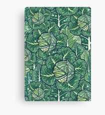 dreaming cabbages Canvas Print