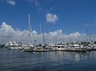 A Fort Lauderdale Marina on a Sunny Day by Gerda Grice