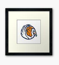 Pelican Wings Basketball Retro Framed Print