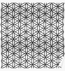 Flower of life pattern Poster