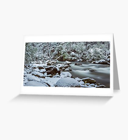 White on Green Greeting Card