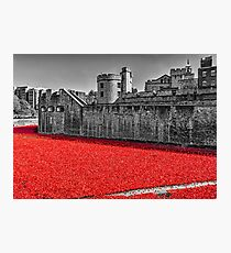 Sea Of Red Photographic Print