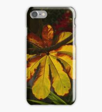 light on leaf - luz sobre hoja iPhone Case/Skin