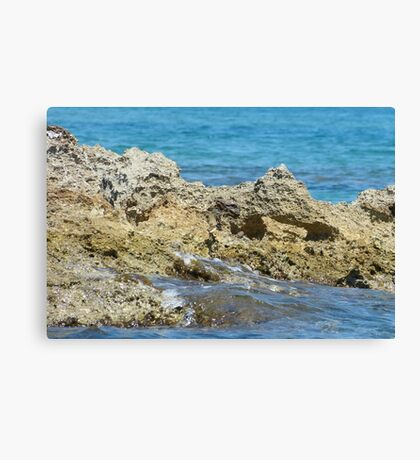 Sharp splash Canvas Print