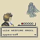 Weeping Angel Appeared! by KanaHyde