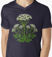 Anise T-Shirt