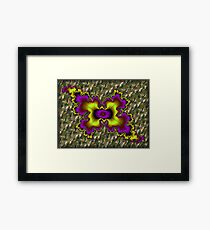 Topper... Framed Print