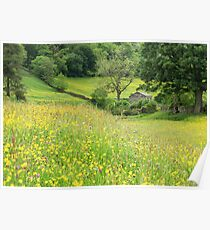 Dales barn and flower meadow Poster