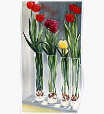 Tulips in the window Poster