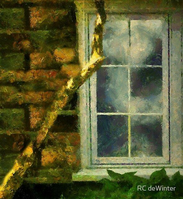 Heathcliff's Window by RC deWinter