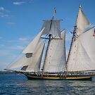 The Pride of Baltimore II at Harbourfront by Gerda Grice