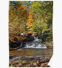 George Childs Park In Autumn Poster