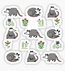 Possum Parade Sticker