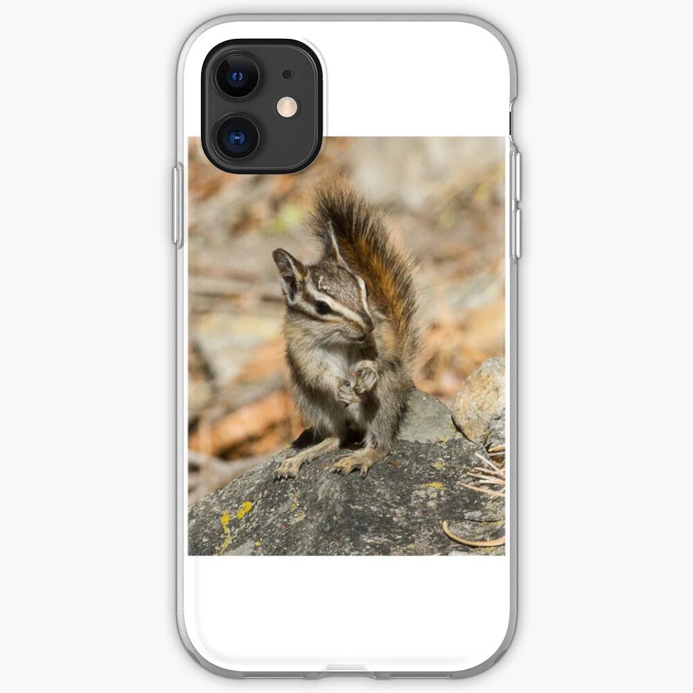 Hello chipmunk! iPhone Case & Cover
