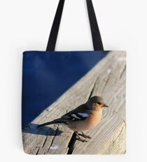 Red Poll Bird photographed in New Zealand  Tote Bag