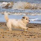 Beach Fun by Kawka