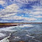 Coastal Daydreams by Vicki Field
