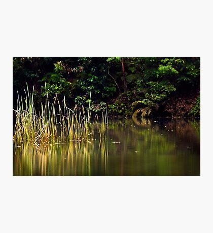 Blue Pool reflections III Photographic Print