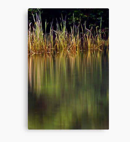 Blue Pool Reflections II Canvas Print