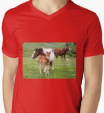 Horses grazing in a green meadow  T-Shirt