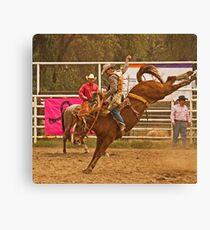 Rodeo A Wild Horse Kicks Its Back Legs High in the Air Canvas Print