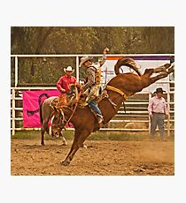 Rodeo A Wild Horse Kicks Its Back Legs High in the Air Photographic Print