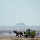 Life and recreation at  beach by Arvind Singh