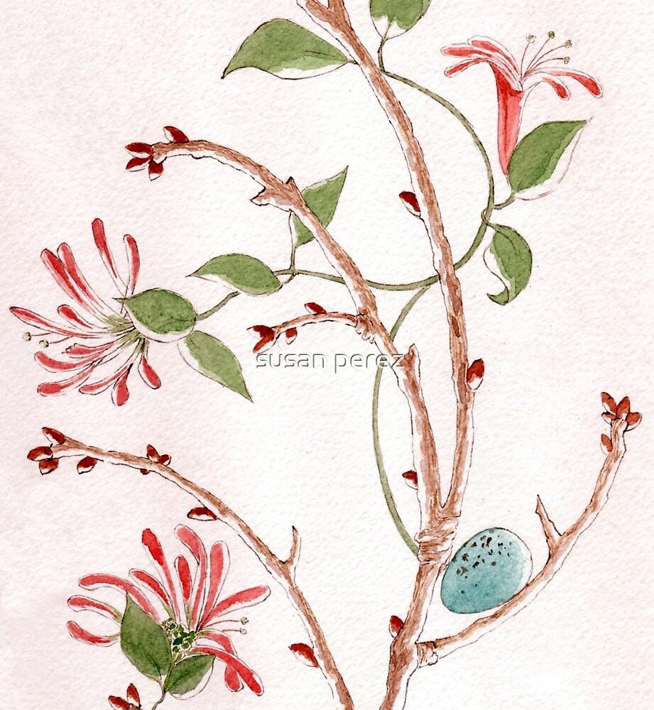 Robins Ei mit Geißblatt von susanPerez